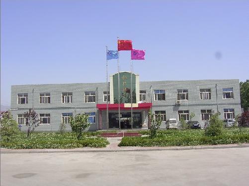 河南龙鼎铸业股份有限公司